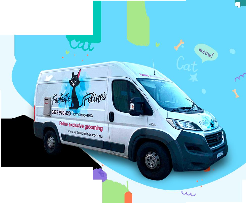 mobile cat grooming Van