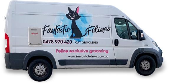 mobile cat grooming van Sunshine Coast